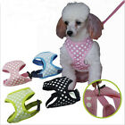 Pet Dog Cat Puppy Soft VEST Mesh Breathe Adjustable Harness Braces Clothes New