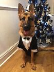 Male Dog New TUX TUXEDO WEDDING Costume Clothing Bow Tie white shirt