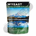 Wyeast 1099 Whitbread Ale Liquid Home Beer Brewing Yeast Homebrew PRIORITY SHIP