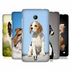 HEAD CASE DESIGNS POPULAR DOG BREEDS HARD BACK CASE FOR NOKIA LUMIA 635