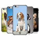 HEAD CASE DESIGNS POPULAR DOG BREEDS HARD BACK CASE FOR APPLE iPHONE 6 4.7