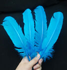 Free Shipping 10-100pcs Rare natural Turkey feathers 28-33cm / 11-13inches