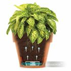 Planter Latina Decorative Self Watering plastic flower pot home garden