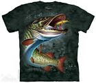 Kyпить New The Mountain Muskie Fish T Shirt на еВаy.соm