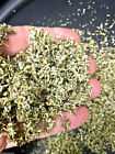 Damiana Leaf c/s  Ultimate Top Quality Smells Great Wild Crafted Fast Shipping