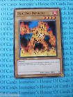 Blazing Inpachi 5DS3-EN002 Common Yu-Gi-Oh Card Mint 1st Edition New