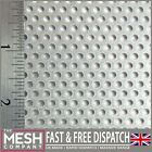 3mm Hole x 5mm Pitch x 1mm Thickness Galvanised Steel Perforated Mesh Sheet