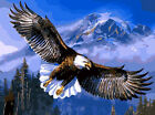 A Preying Bold Eagle In The Valley Needlepoint Canvas 625