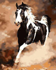 Portrait of Black White Horse Needlepoint Canvas 732