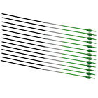 12 pcs Carbon Arrows Up to 70lb Screw Tip Compound Recurve Bow Target Hunting