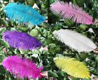 "Wholesale Quality  OSTRICH FEATHERS 18-20""/45-50cm Multi-color selection"