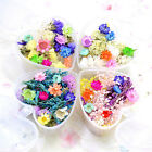 Mixed Dried Flowers Nail Art Diy Bottle Decoration Preserved Flower Decorations