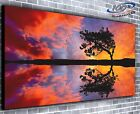 Tree of Life Panoramic Canvas Print Modern Art 4 Sizes to Choose - Ready to Hang
