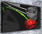 Rose Black Red Panoramic Canvas Print Modern Art 4 Sizes to Choose Ready to Hang