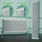 Horizontal or Vertical Radiator Traditional Style Column Radiators 2 or 3 Column