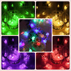 100 LED Christmas Wedding Garden Party String Window Tree Lights 10M + Contrllor