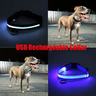 RECHARGEABLE LED Light Flashing Glow Dog Pet Night Safety Adjustable Neck Collar