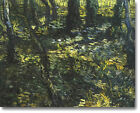 HUGE Van Gogh Undergrowth with Ivy Stretched Canvas Giclee Art Repro ALL SIZES