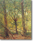 HUGE Van Gogh Trees & Undergrowth Stretched Canvas Giclee Repro ALL SIZES