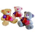 Heart Teddy Bear Plush Bean-Filled Romantic Valentines Day Gift Soft Toy 23 cm