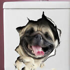 3D Dog Wall Sticker Wall Print Decal Wall Decor Indoor Wall Mural For Toilets US