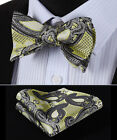 BP914Y Yellow Black Paisley Men Silk Classic Self Bow Tie Pocket Square set