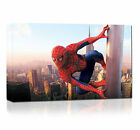 Spider Man Framed Wall Art Canvas Print Picture