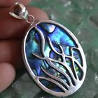 Natural Blue Abalone Sea Shell in Plastic Resin Pendant wth 925 Sterling Silver