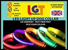 LED Dog Pet Collar Flashing Luminous Adjustable Safety Light Up Nylon FREE POST-
