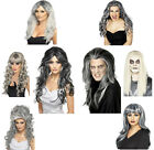 Halloween Ghost Wig Long Grey Wig Bride Fancy Dress