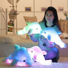 Cute LED Light Dolphin Stuffed Animals Plush Toy Pillow Kids Xmas gift US Seller