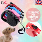 2016 Pet Training Dog Lead Tape Retractable Leash Extendable 16.5/9.8 FT