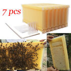 7pcs Auto Upgraded Honey Hive Beehive Frames Or Beekeeping Super Brood Box UK