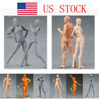 action pc - 2PC Figure Ferrite Action Toy Play Arts Kai Anime Model Drawing Kid Toy US STOCK