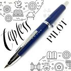 Pilot Capless Stainless Edition Click Action Blue Fountain Pen
