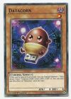 Datacorn SDPL-EN001 Common Yu-Gi-Oh Card English 1st Edition New