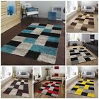 Small Large Size Thick Bright Soft Shaggy Living Room Rug Bedroom Floor Rugs Mat
