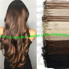 200s 100g thick russian remy micro loop bead ring human hair extensions brown uk