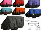 "Showman Waterproof Dog blanket XXL ( 34""-37"")"