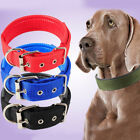 Dog Strap Collar For Small And Big Pet Dogs Adjustable Comfortable Collars New