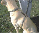 Mendota EZ Trainer Dog Leash Training Lead Made in USA Humane, Gentle, Easy