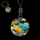 MACAW 31062 button earrings necklace ponytail zipper pulls bird macao jewelry