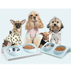 76 Stainless Steel Double Pet Bowl Dog Splash-proof Water Food Feeder Station