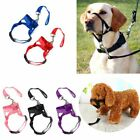 MEW Dog Muzzle Strap Halti Head Collar Stops Nose Reigns Pet Pulling Halter UK