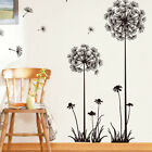 3D Dandelion Wall Sticker Fashion Removable Art PVC DIY Decal Mural Home Decor