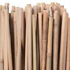 Thick Bamboo Garden Canes Heavy Duty Gardens Strong Plant Support Professional