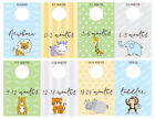 Baby Closet Dividers, Double Sided, Girl or Boy, Newborn to Toddler- Set of 8