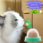 10X Cat Snacks Sugar Candy Licking Solid Nutrition Energy Ball Toy Healthy UK