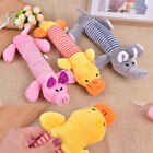 1PC Sound Funny Soft Pet Puppy Chew Play Squeaker Squeaky Cute & Plush Chew T DS