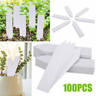Plastic Plant Stakes Marker Plant Label Nursery Tags 4X8'' for Fruit Tree Flower